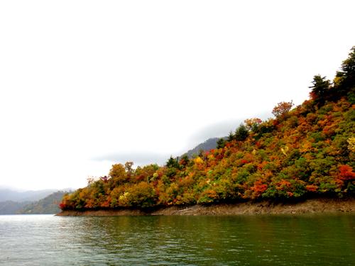 奥只見湖の紅葉