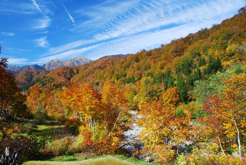 銀山平温泉の紅葉