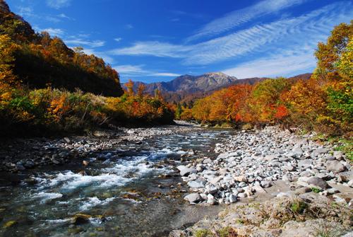 銀山平・北ノ又川と越後駒ケ岳の紅葉