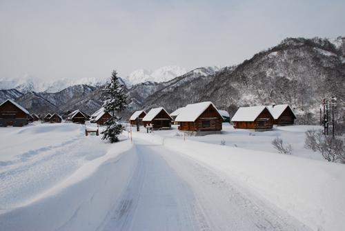 冬の銀山平森林公園